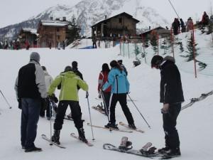 5.Ski